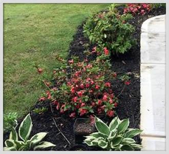 Lawn Care Maintenance and Flower Bed Maintenance Georgia